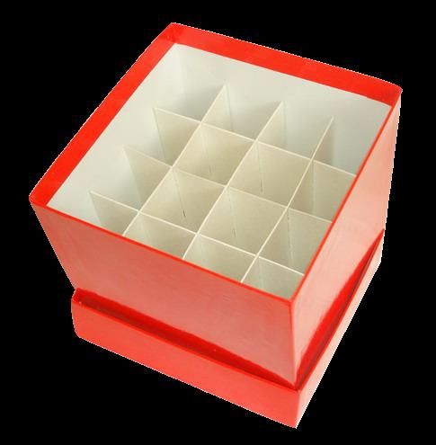 Papp-Lagerbox Typ C - für 50 ml Röhrchen (148x148x128mm))